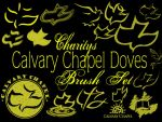 Calvary Chapel Doves and Logos by sevynstarr