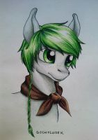 My Little Pony - OC Theo Headshot 11.05.2015 by gocholudek