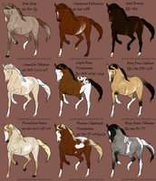2011 Summer Auction-winners by LittleCreekStables