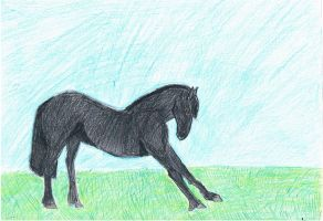 friesian bowing by whenwolveshowl