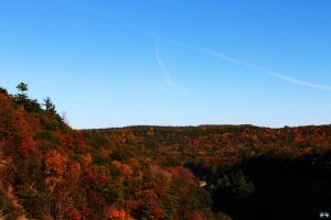 Letchworth State Park Series #15 by LifeThroughALens84