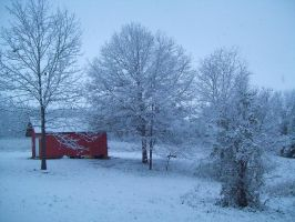 Red Shed - Winter 2009 by CrystalMarineGallery