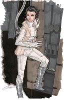 Princess Leia 8/15 by Hodges-Art