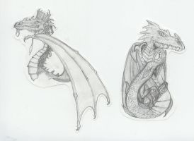 Dragons by Lycanstrife