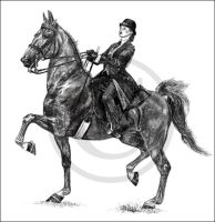 American Saddlebred by Project-Dream