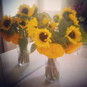 Sunflowers in Vase by PheonixCrucifix