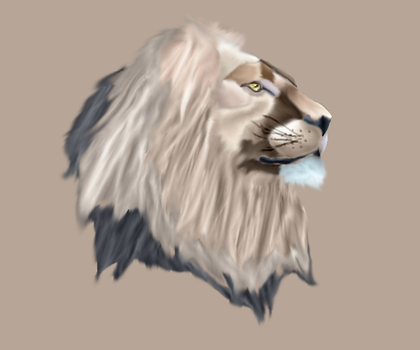 Realism Lion by SirenSerenade