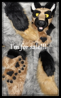 Shepherd partial FOR SALE by Sharpe19