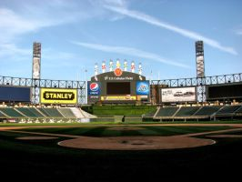 Cellular Field by kaitlyn091491