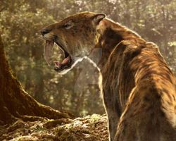 Sabre Tooth by Jdailey1991
