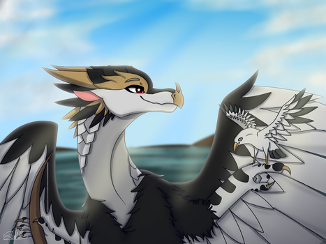 Where the Gulls Are :Gift: by Haasiophis-Sahel