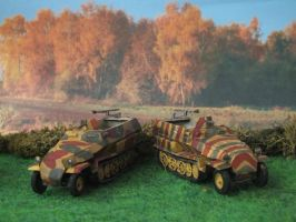 Armourfast Sdkfz. 251/1 by Baryonyx62