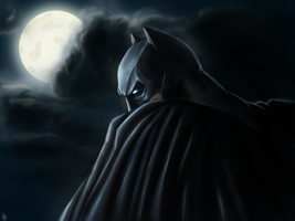 Batman - Gotham Knight by CharlesLogan