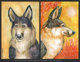 ACEO for Silvixen by Illusir