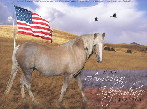 American Independence by hls-mircea