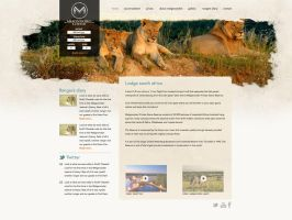Safari Lodge south africa by kayintveen