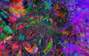 Quasi-One-Dimensional Phase Fluctuations by Don64738