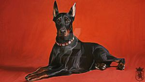 Doberman painting by PdictusMagister