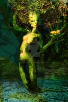 treegirl by wilgaworld