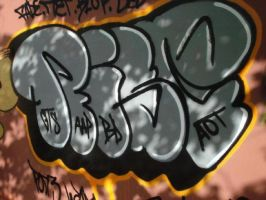 Riser orenge outline by Riserist