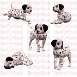 Dalmatian Puppies Stock 2 by Shoofly-Stock