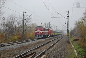 M61 010 and 2761 017 with special train near Gyor by morpheus880223