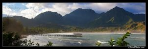 Hanalei. by aFeinPhoto-com