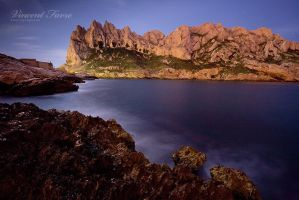 Under the moonlight... by vincentfavre