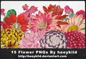 15 Flower PNGs By heeykiid by heeykiid