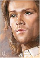 Jared by LiLen