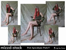 Post Apocalypse Pack 5 by mizzd-stock