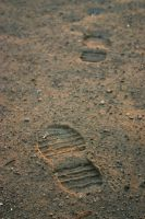 Fading Steps by shom