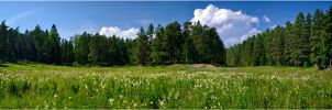 Pano... Valaam Islands... 2010 by my-shots