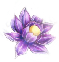 Purple Lotus with yellow cente by mpenckofer