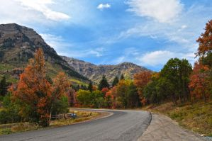 Fall Colour Road by Moohoodles
