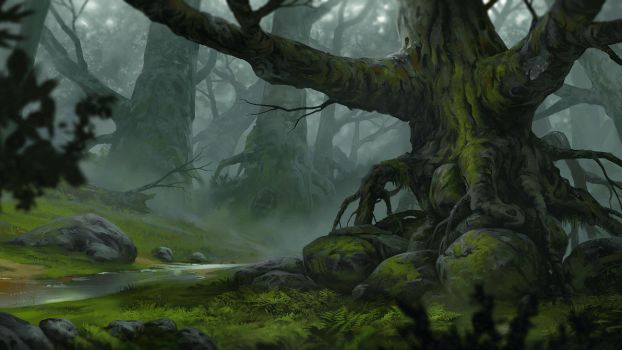 Forest by artofmarius