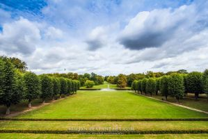 The great garden by Koljan