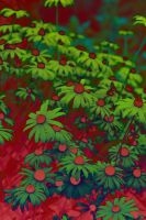 Abstract Flower Background 02 by dknucklesstock