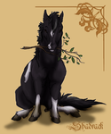 the real shadrack by DawnFrost