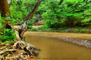 00-OtterCreekPark-2014-P1040058-HDR-WP-Master by darkmoonphoto