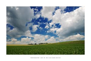 Green fields of summer - V by DimensionSeven