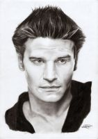 David Boreanaz 'Angel' by Cardinalsin692