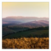 Misty Morning by Marcello-Paoli