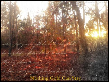 Nothing Gold Can Stay. by BulletsxButterflies