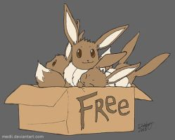 FREE TO GOOD HOME by medli