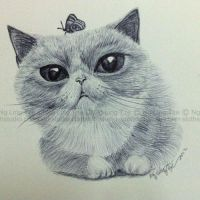 cat drawing practice (02) by tamaow