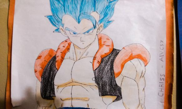 SSJ God Gogeta - Drawed Out by Alvc57