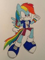 Rainbow Dash the Pegasus by ArtKing3000
