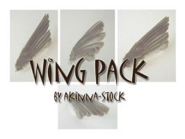wing pack by akinna-stock