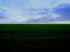 green and sky by Mittelfranke